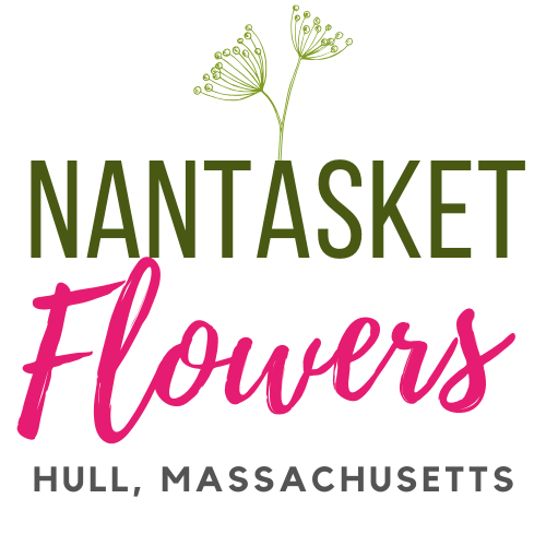 nantasket-flowers-logo (2)